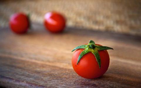 tomato_1920-1024x658-1